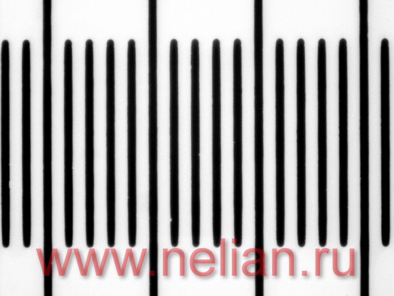 Внешний вид шкалы объект-микрометра под увеличением 40 крат